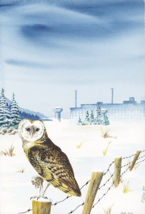 owl with mouse in winter - print quality